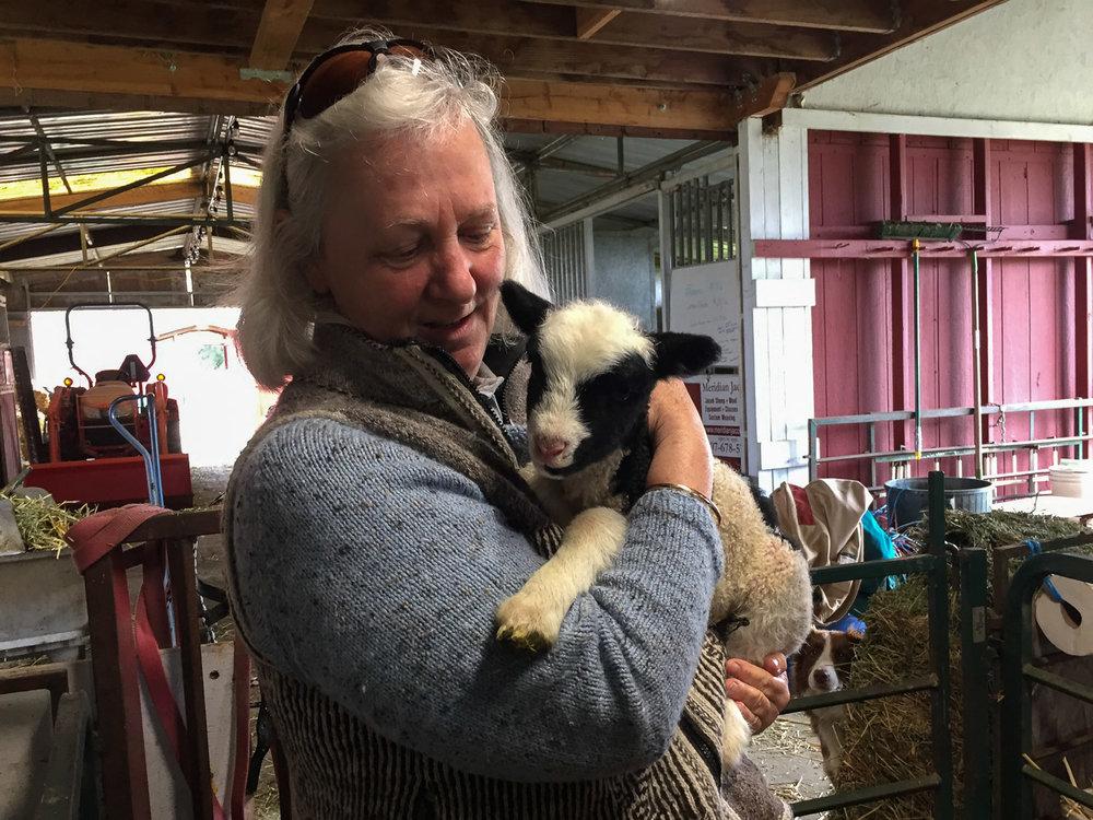 Farm Club member cuddling lambs.