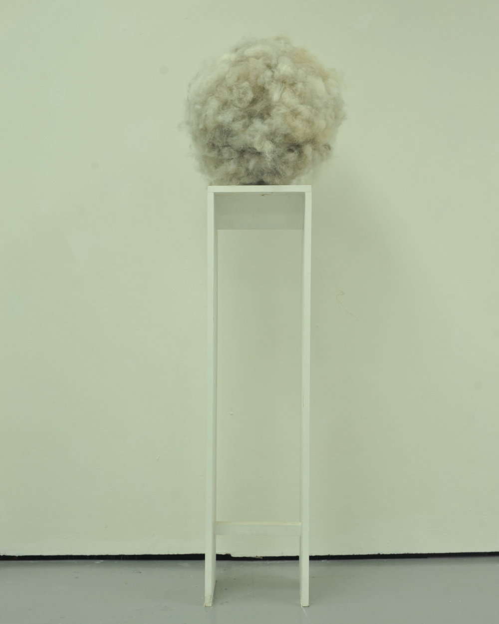 fluff 2017 dog hair, plinth 45 cm dia