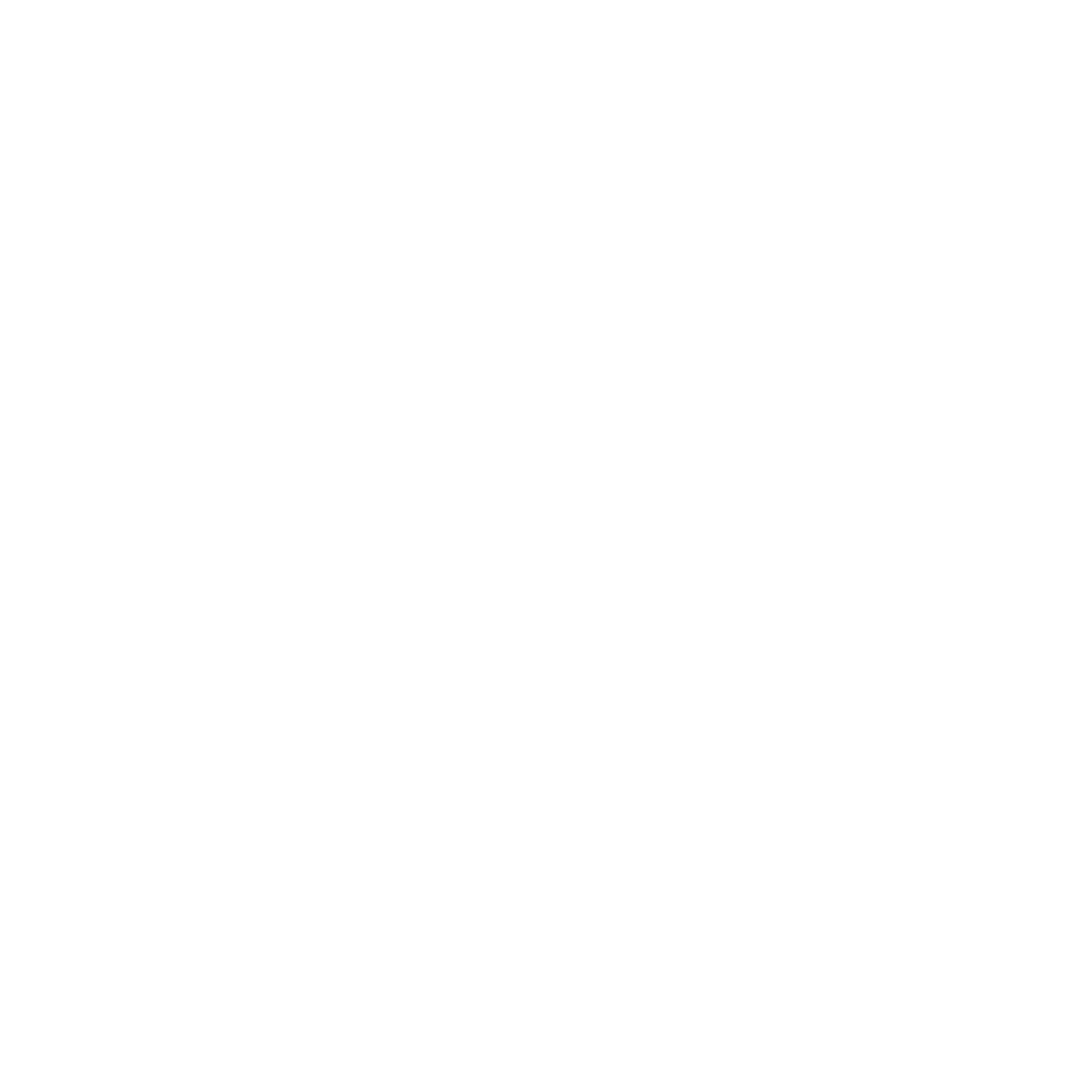 The CariBiz Club