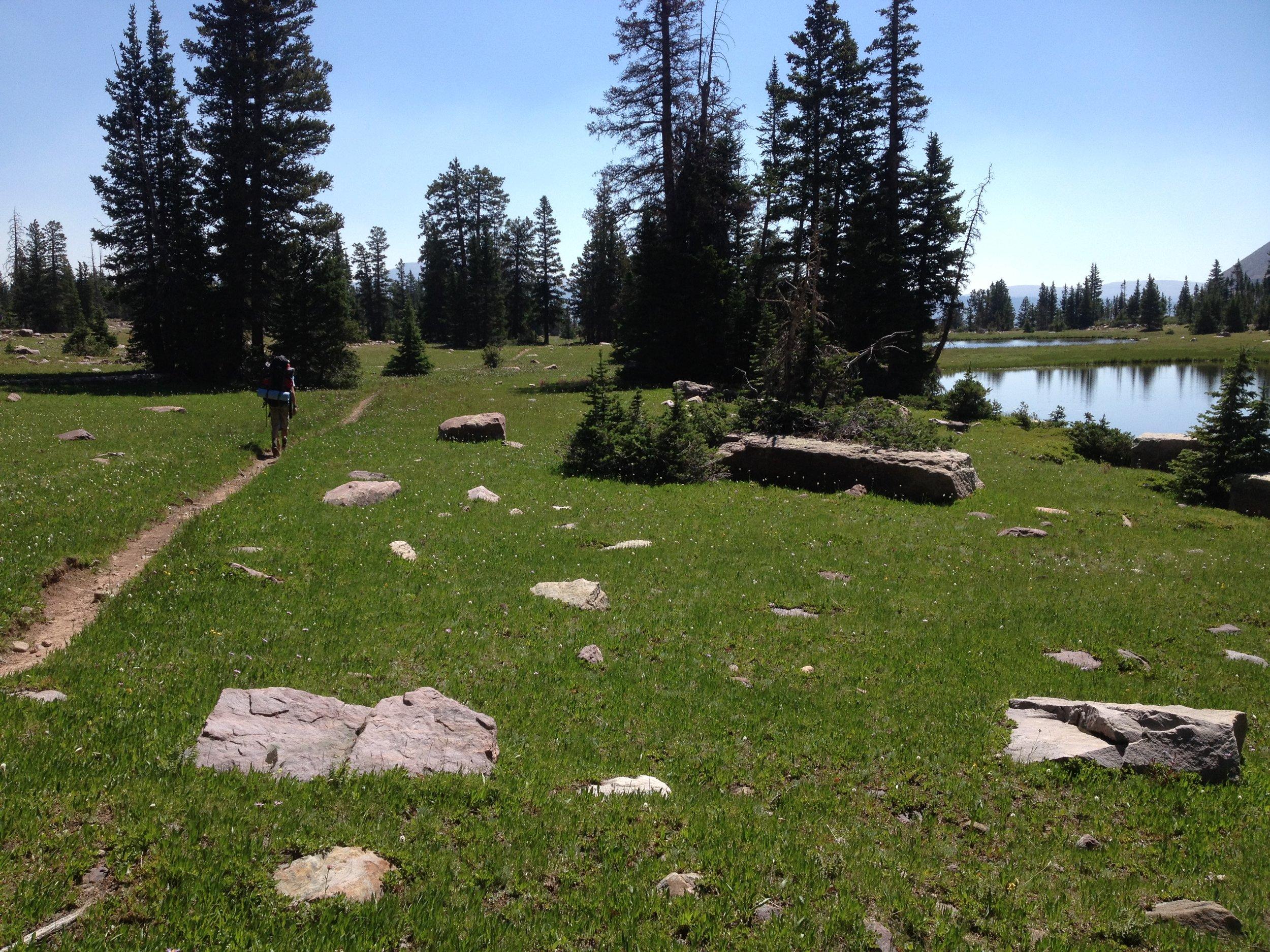 Orem Sciatica Doctor Rock Creek Drainage