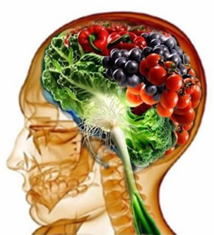 unhealthy diet shrinks brain orem utah chiropractor