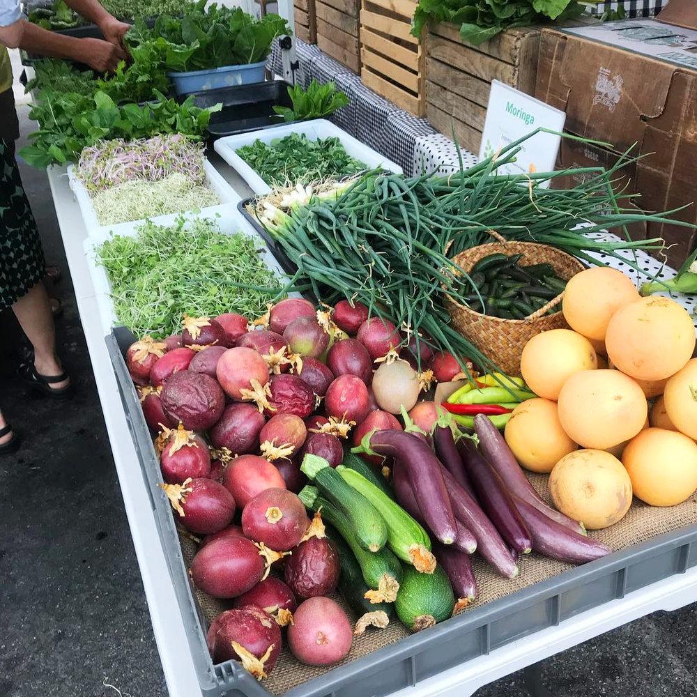 farmersmarketstand_harvest.jpg