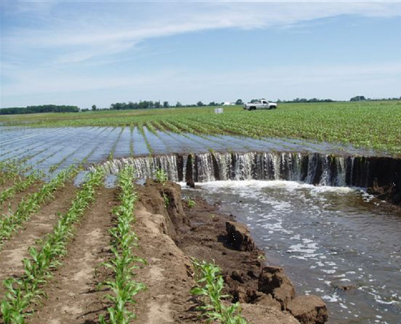 Soil erosion in cornfield