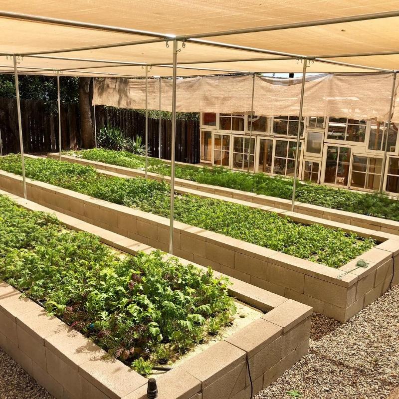 Dan's Farm.jpg