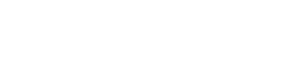 The Future is Now Logo_Horizontal - White.png
