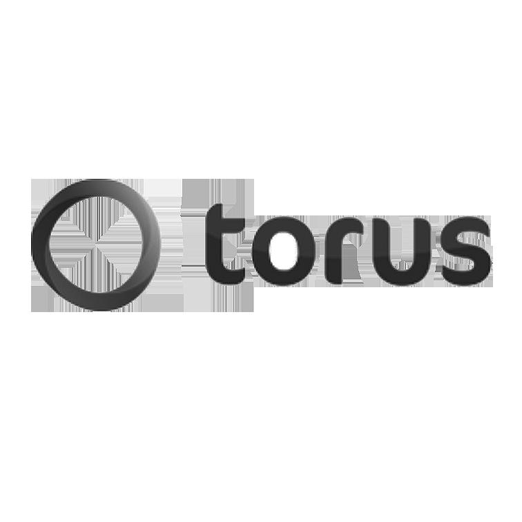 Torus Group