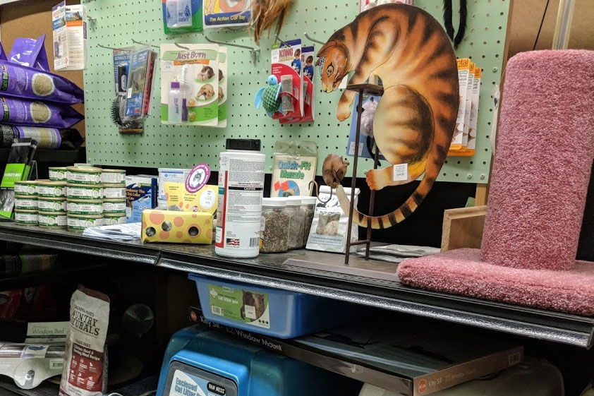 Cat food, toys, posts & litter trays