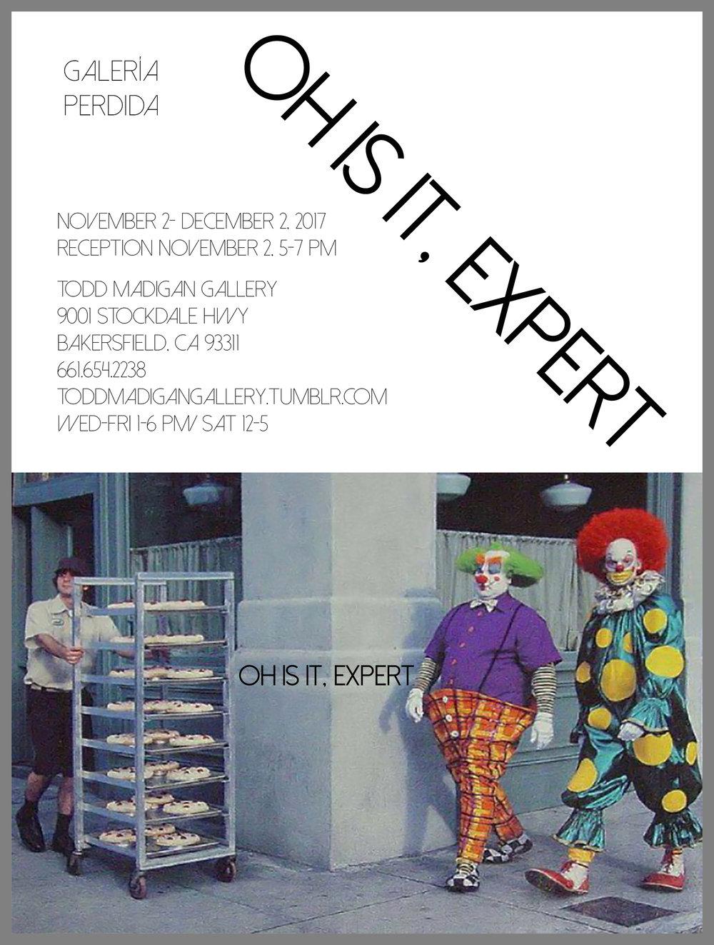 Expert_combo2.jpg