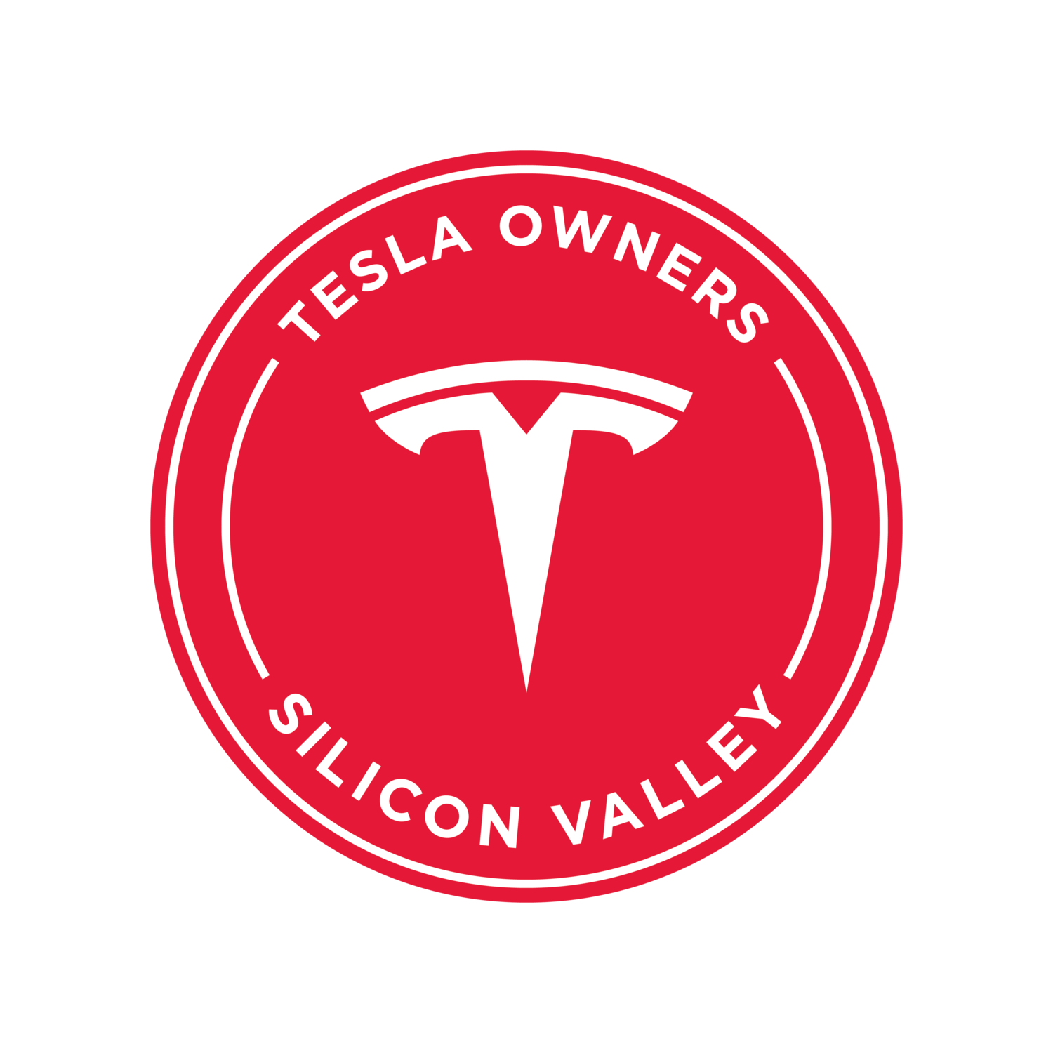 Tesla Owners of Silicon Valley