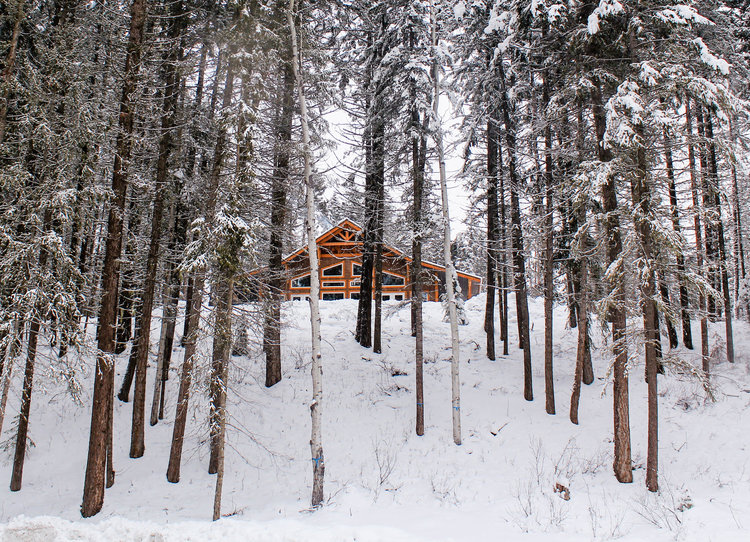 Burton's Retirement Rancher - Nestled into the forest but only 15 minutes from all modern amenities, this home is an active retiree's dream with lots of recreation opportunities right out the front door.