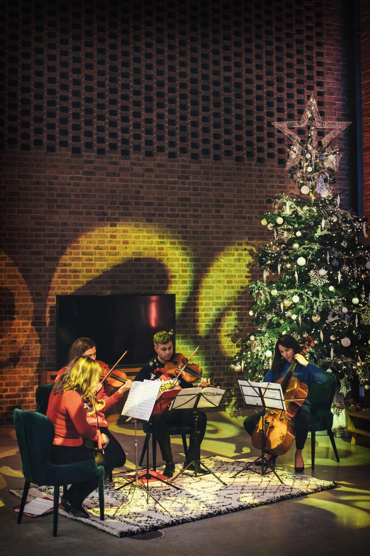 Elixir String Quartet Reception