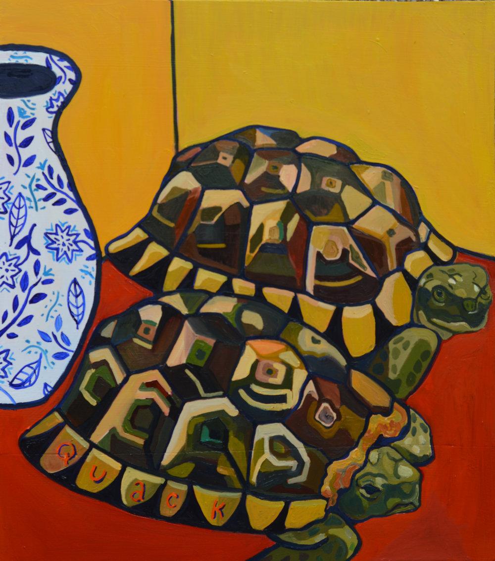 Tortoises of Maryhill (Boris and Pablo)
