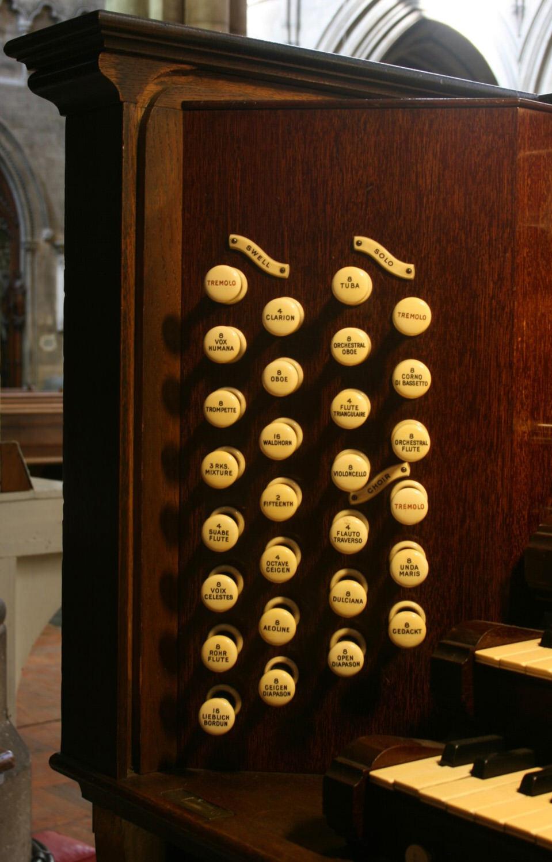 Organ detail