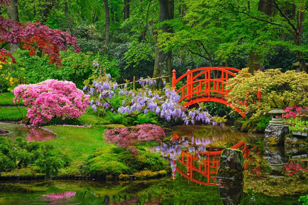 Gratitude Garden -