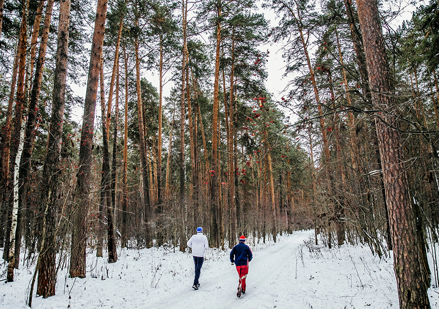 winter-exercise-in-woods.jpg