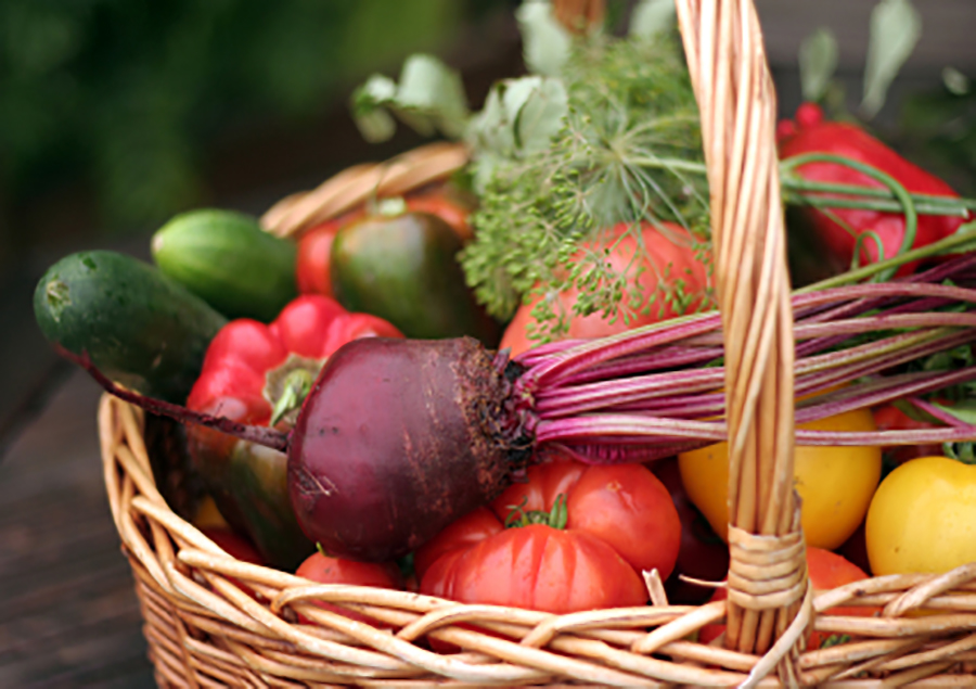 basket-of-vegetables.jpg