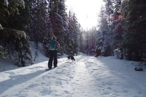 mindful-walking-winter.jpg