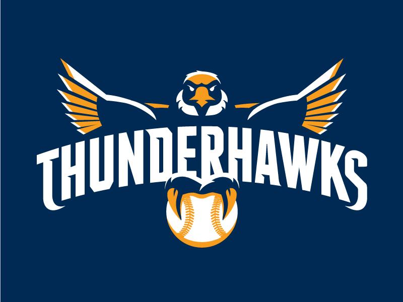 thunderbirdsdribbble.jpg