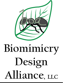 Biomimicry Design Alliance