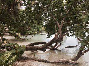 Gilligan's Island.