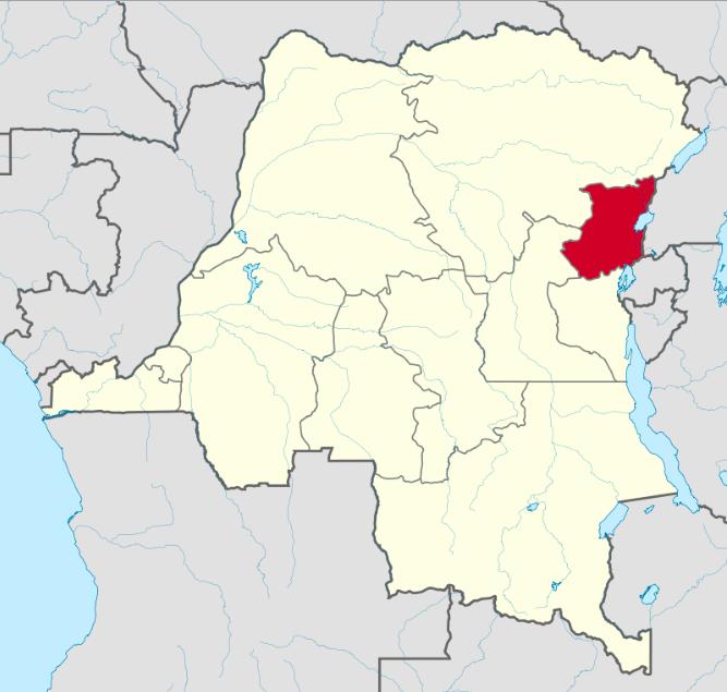 Instability in the North Kivu province of the Democratic Republic of the Congo has killed dozens of UN peacekeepers and displaced up to 1.7 million people. Wikipedia.