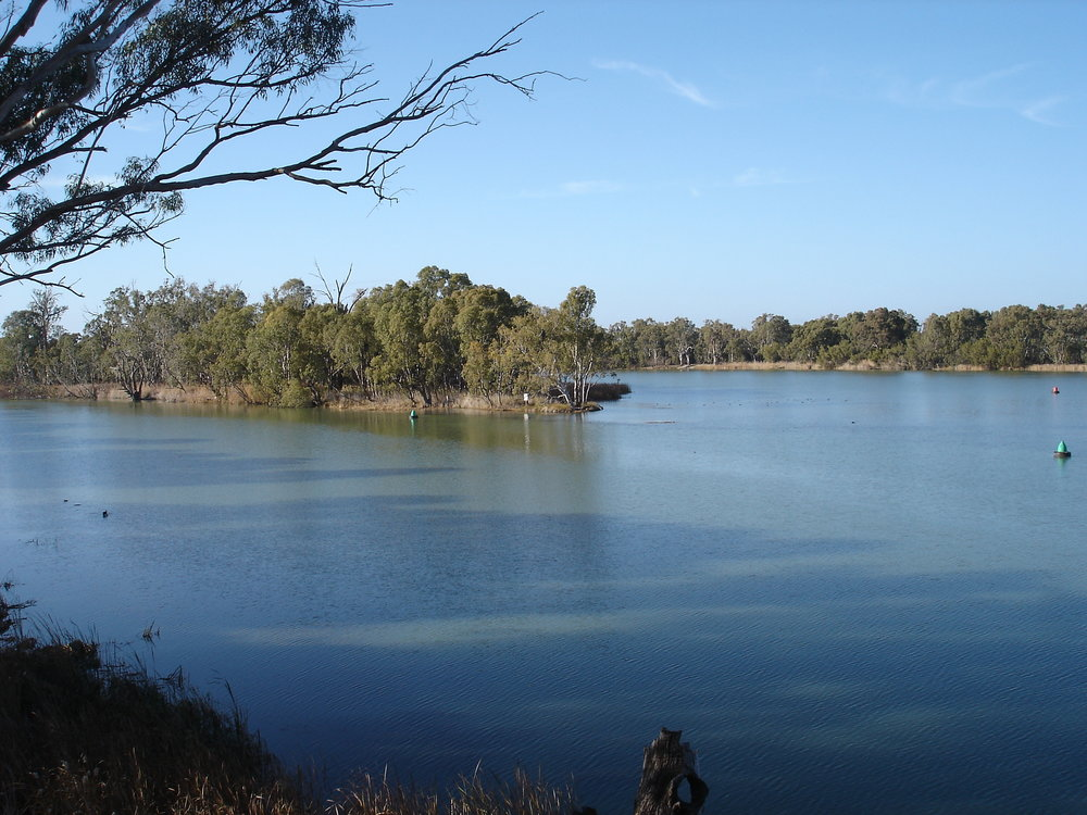 The Darling River provides a home to endangered fish species, as well as supplies water to farmers and metropolitan areas. (Wikimedia Commons)