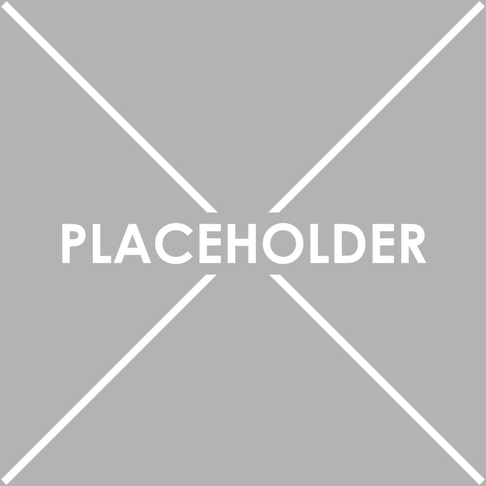 Placeholder.png