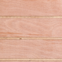 T1-11 Plywood 4-inch