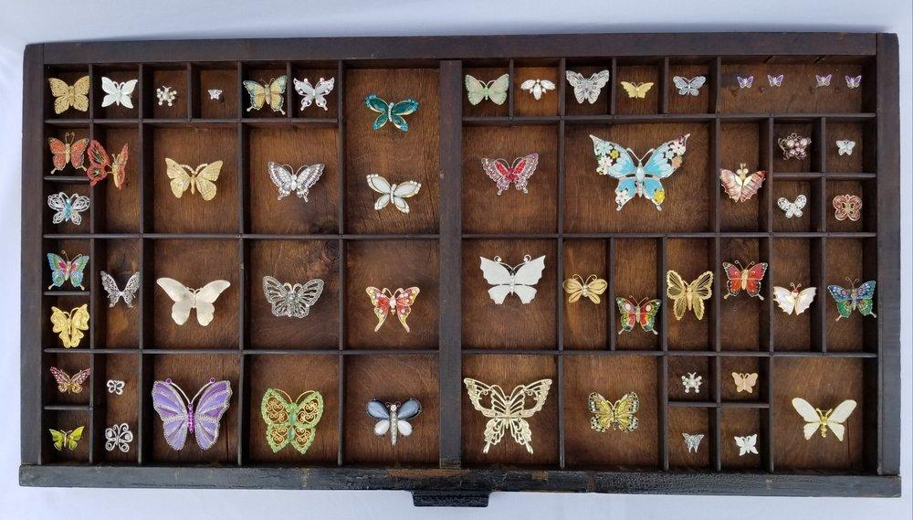 Butterfly Catalogue II