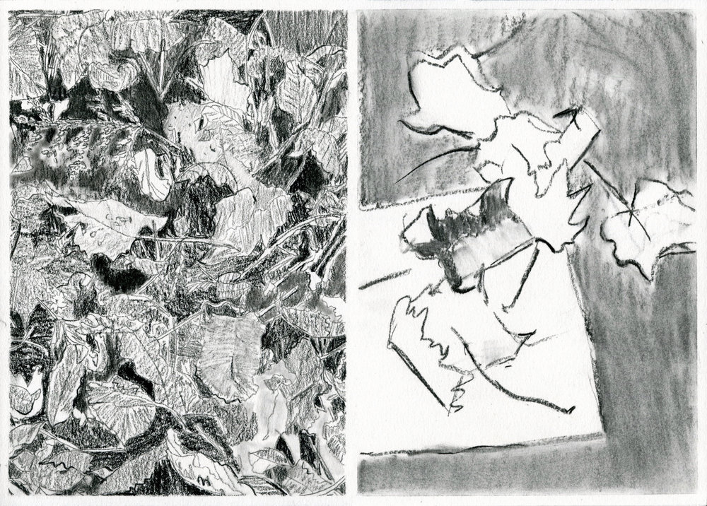 Leaves (Two Views)