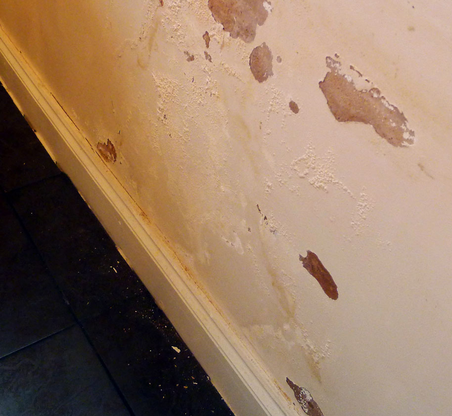 Rising-damp-wall.jpg