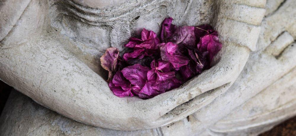 coalesce-fairuse-photo3.jpg