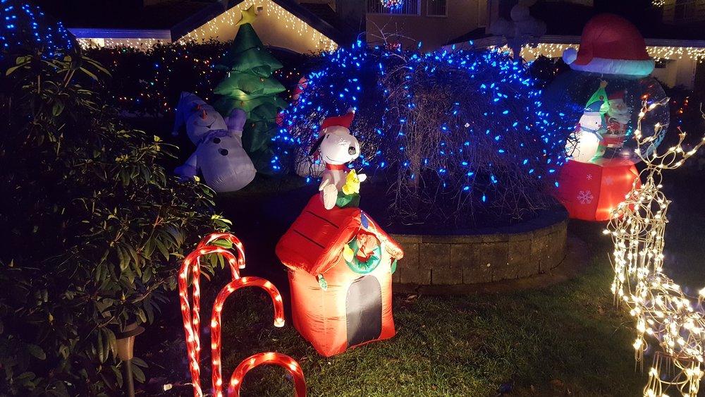 Driving around the neighbourhood looking at Christmas illuminations.