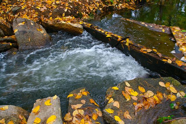 waterovertherocks.jpg