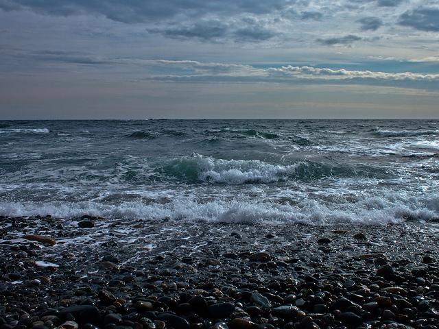 oceancontemplation.jpg