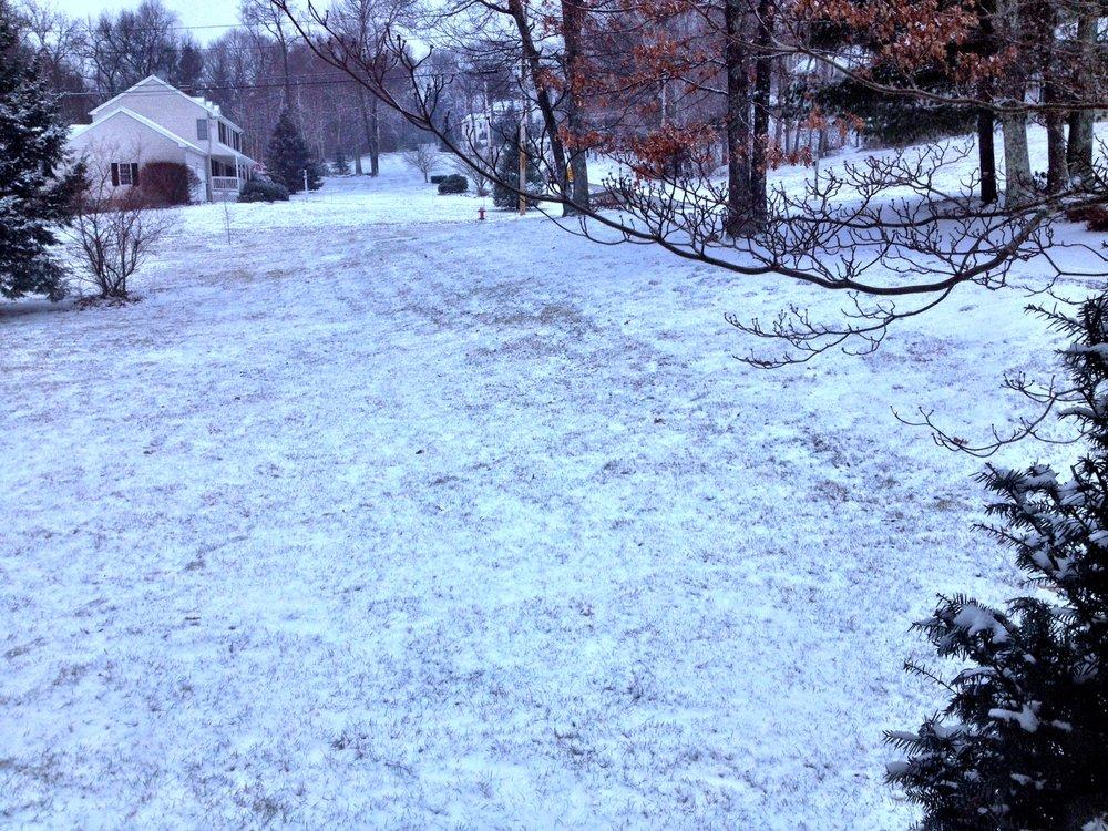 snowymorning.jpg