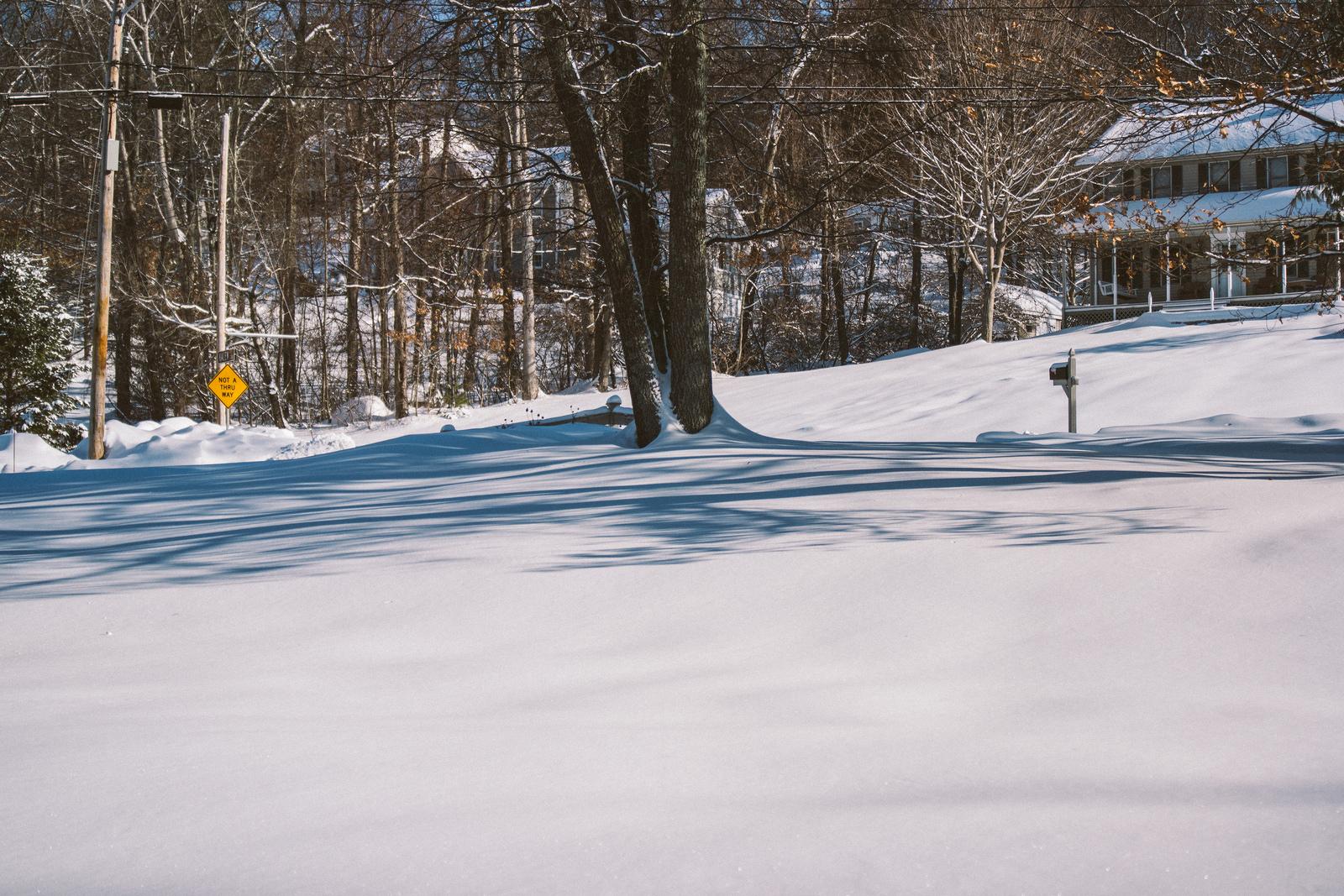 snowyneighborhood