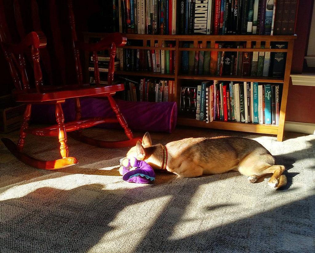 Nadia Loves Sunbeams