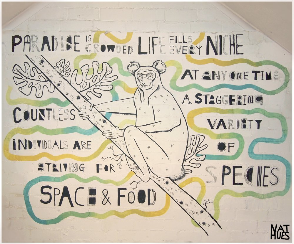 """""""Paradise is crowded, life fills every niche. At anyone time a staggering variety of species, countless individuals are striving for space and food."""" - Quote from a David Attenborough documentary. Hand-painted mural in Leeds, 2019."""