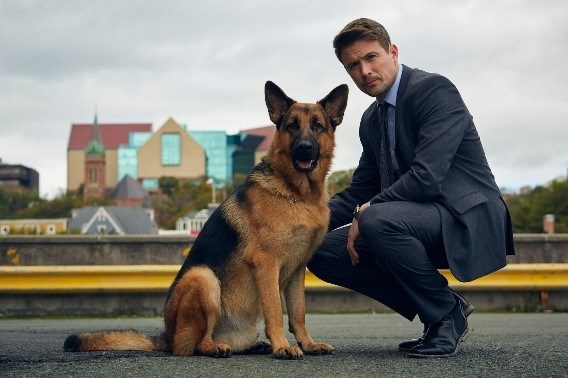 (L-R): Diesel as Rex and John Reardon as Detective Charlie Hudson in REX (Photo by Duncan de Young for Shaftesbury/Pope; Copyright: Shaftesbury/Pope)