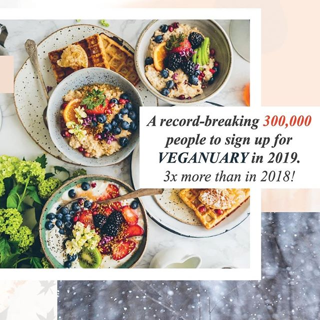 "Comment 💛 if that number excites you! 🎉 Sometimes I feel down because it seems like things are not moving fast enough when it comes to veganism. Then I hear about a prediction of 300,000 people to sign up for Veganuary and The Economist talking about the reasons why the world as a whole should go vegan. That's when I become hopeful again. That's when the countless silly comments like: ""you should AT LEAST eat eggs, fish and drink milk"" are easier to ignore. We got this. We are making a change. 🌸 Slightly cheezy post today. It's just one of those days 🙈 #govegan"