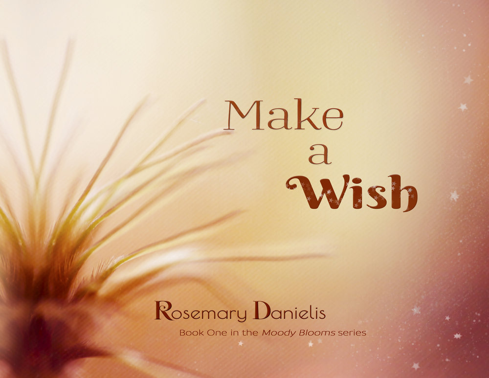 Make a Wish half cover.jpg