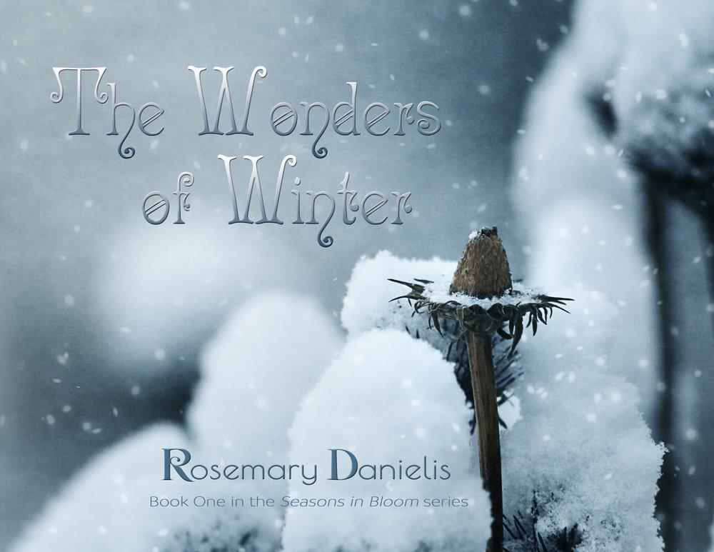 The Wonders of Winter half cover.jpg