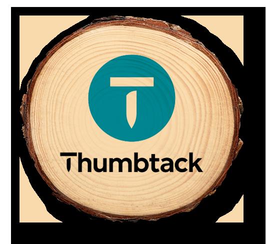 thumbtack pine.png