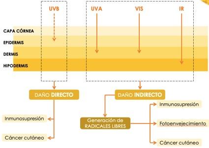 Rayos UV.jpg
