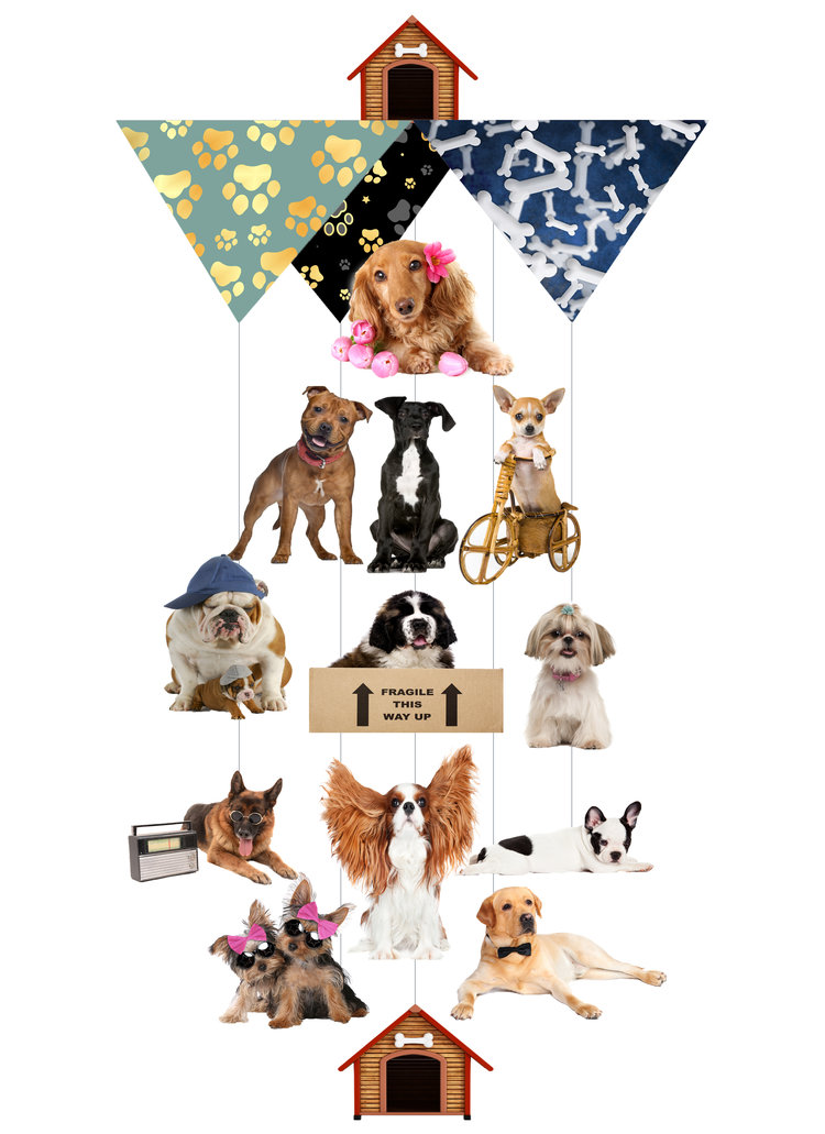 Dog To The Bone Theia Chandelier Card™ opened card