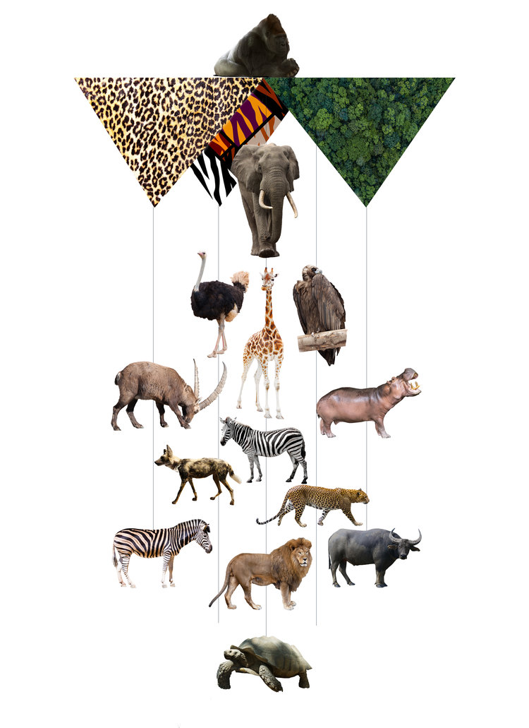 Africa's Big 5 Theia Chandelier Card™ opened card