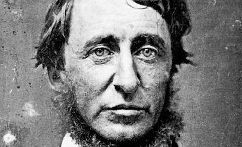 henry-david-thoreau-daguerreotype-1856-black-and-white-beard-author-naturalist-photo