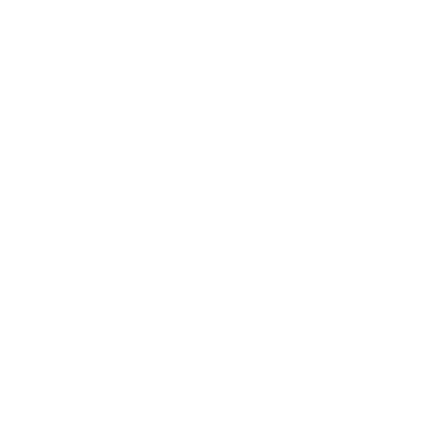 Michigan Academy of Folk Music