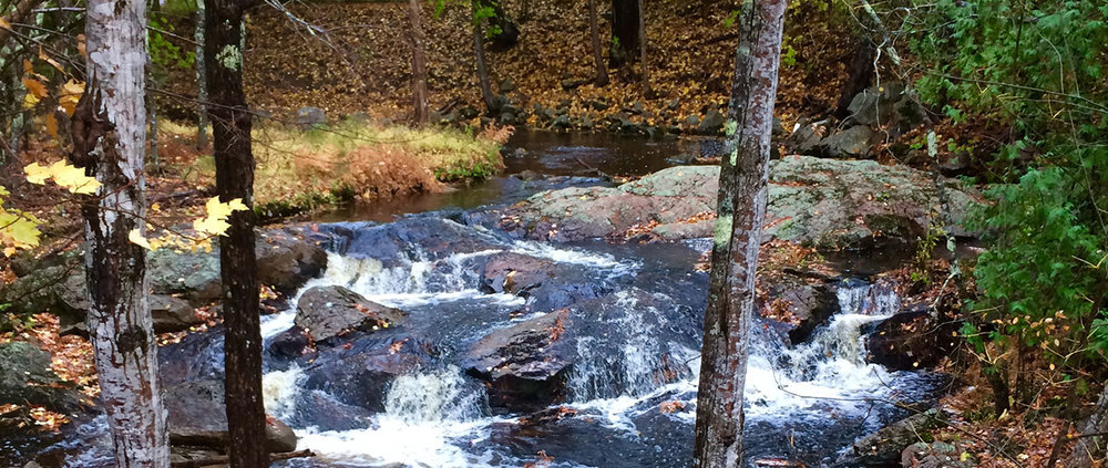 Private stream on a wooded property near Seal Cove, Maine.
